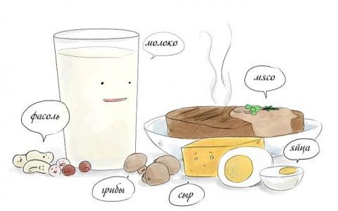 Вкусная и полезная белковая пища